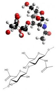 гиалуроновая кислота спб