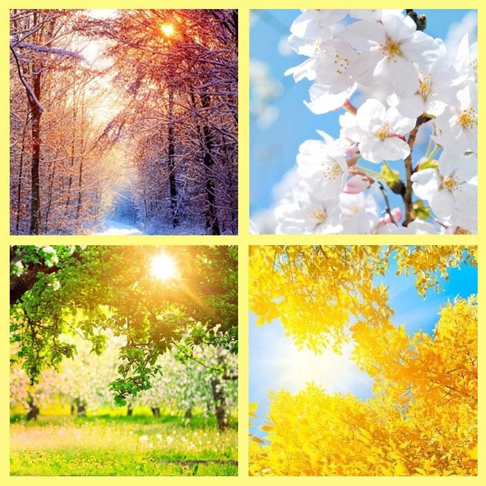 Расписание солнечных дней